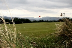 From the long rough at the back of the 12th green.