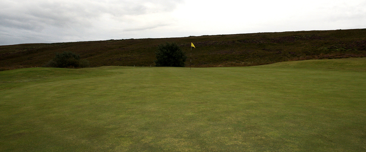 Looking up the length of the 9th green from the left side.