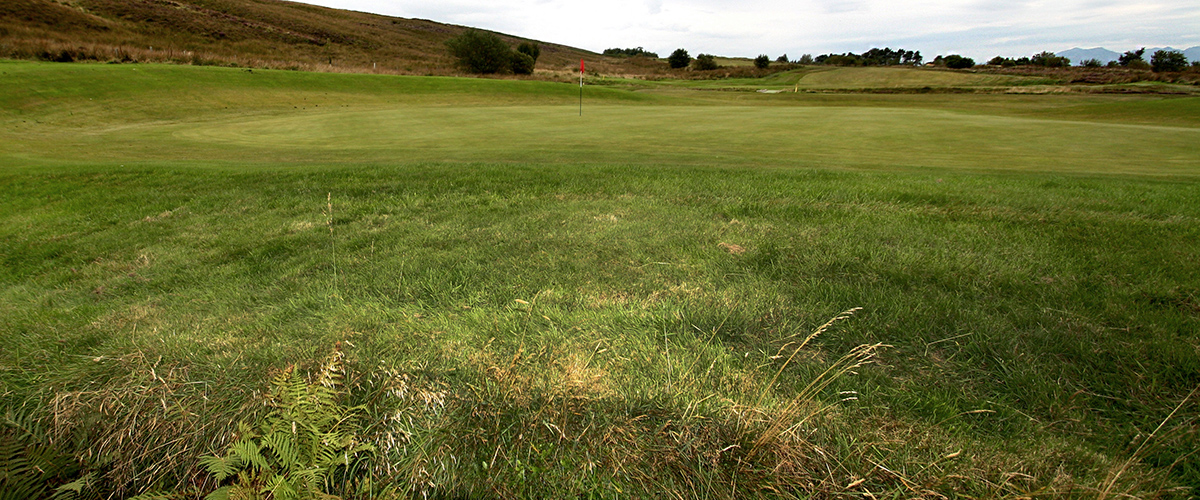 The wonderful amphitheater of the 10th green viewed from behind.