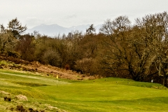The approach to the 3rd green from the left rough.